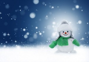 snowman-1090261__340